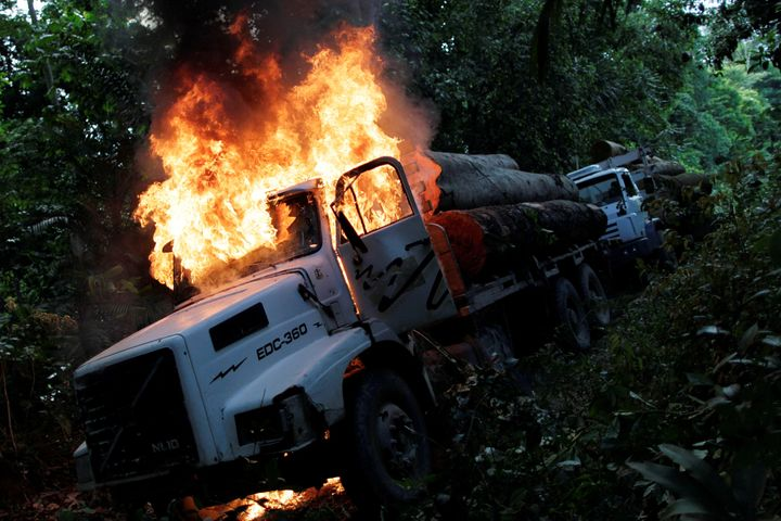 Rangers working with Brazil's environment ministryoften dole out harsh, on-the-spot punishments for illegal loggers, li