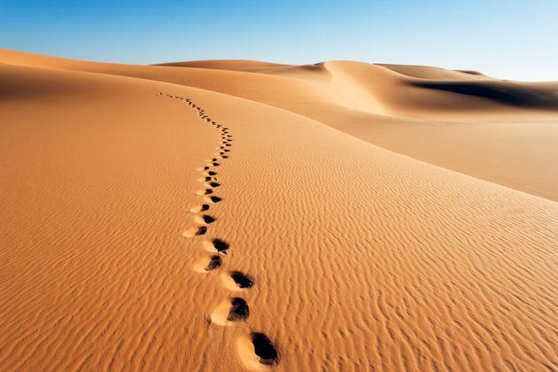 Just 6,000 Years Ago The Sahara Desert Was