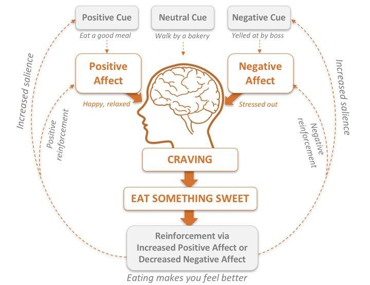 <p>Stress and emotional eating habit loop</p>