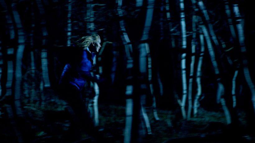 """Sara Lindsey, <em>""""Blue Jay""""</em>"""