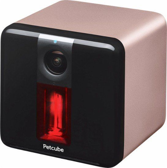 "Petcube 1080p Wi-Fi Camera, $179.99, <a href=""http://www.bestbuy.com/site/petcube-play-indoor-1080p-wi-fi-camera-rose-gold/56"