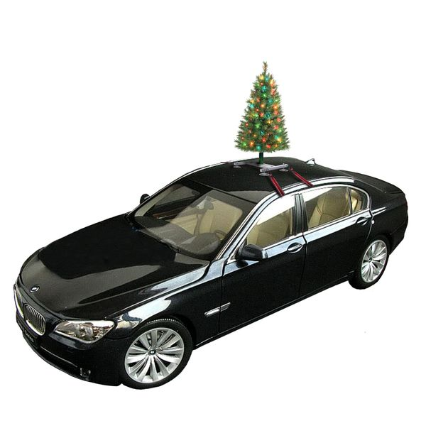 "Some people are really <i>into</i> Christmas, so much so they are willing to drive around with a <a href=""http://www.christma"