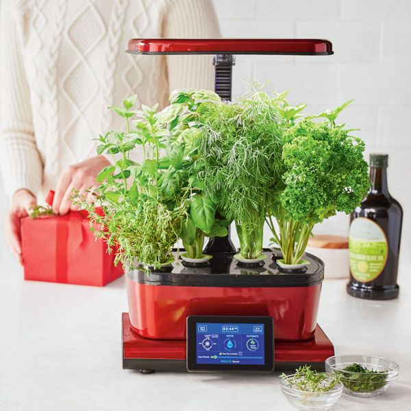 27 must have gifts for the savvy home cook huffpost for Sur la table food scale
