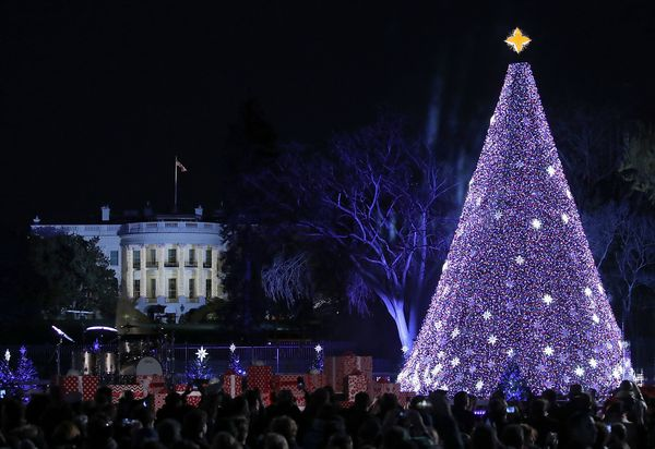 The National Christmas Tree is lit up after US President Barack Obama and his family hit the switch, on December 1, 2016 in W