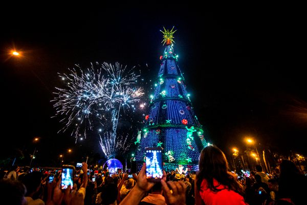 Hundreds of fans watched the inauguration of the traditional Ibirapuera Christmas Tree in the South Zone of Sao Paulo. The in