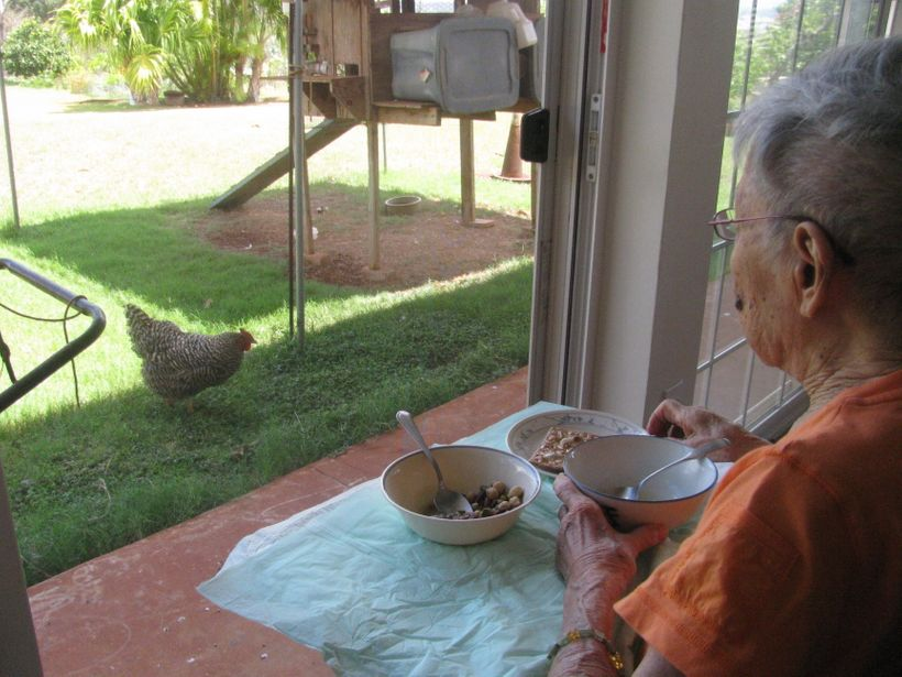 <em>Yasuda enjoys watching the chickens—and family members—come and go as she has her lunch.</em>