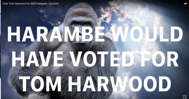 Harambe would have voted for Harwood,