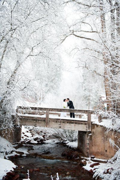 "A romantic walk on the bridge in an enchanted forest looks like it's a scene straight from a <a href=""http://www.bridalguide."