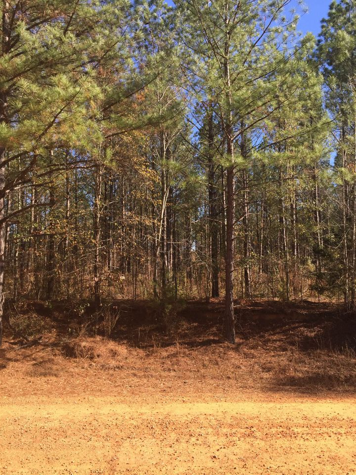 <p>Lessons from a southern rural lifestyle can stick with us many years later.</p>