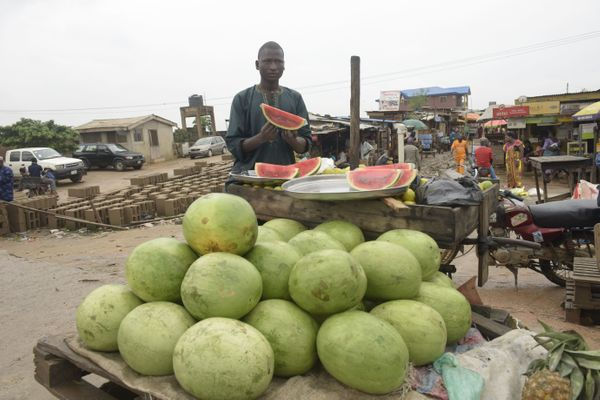 "Nigeria wastes <a href=""http://agronigeria.com.ng/nigeria-food-waste-at-750bn-yearly-danfoss/"" target=""_blank"">$750 billion i"