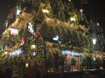 'Britain's Most Festive Pub' Is Covered In 57 Christmas Trees