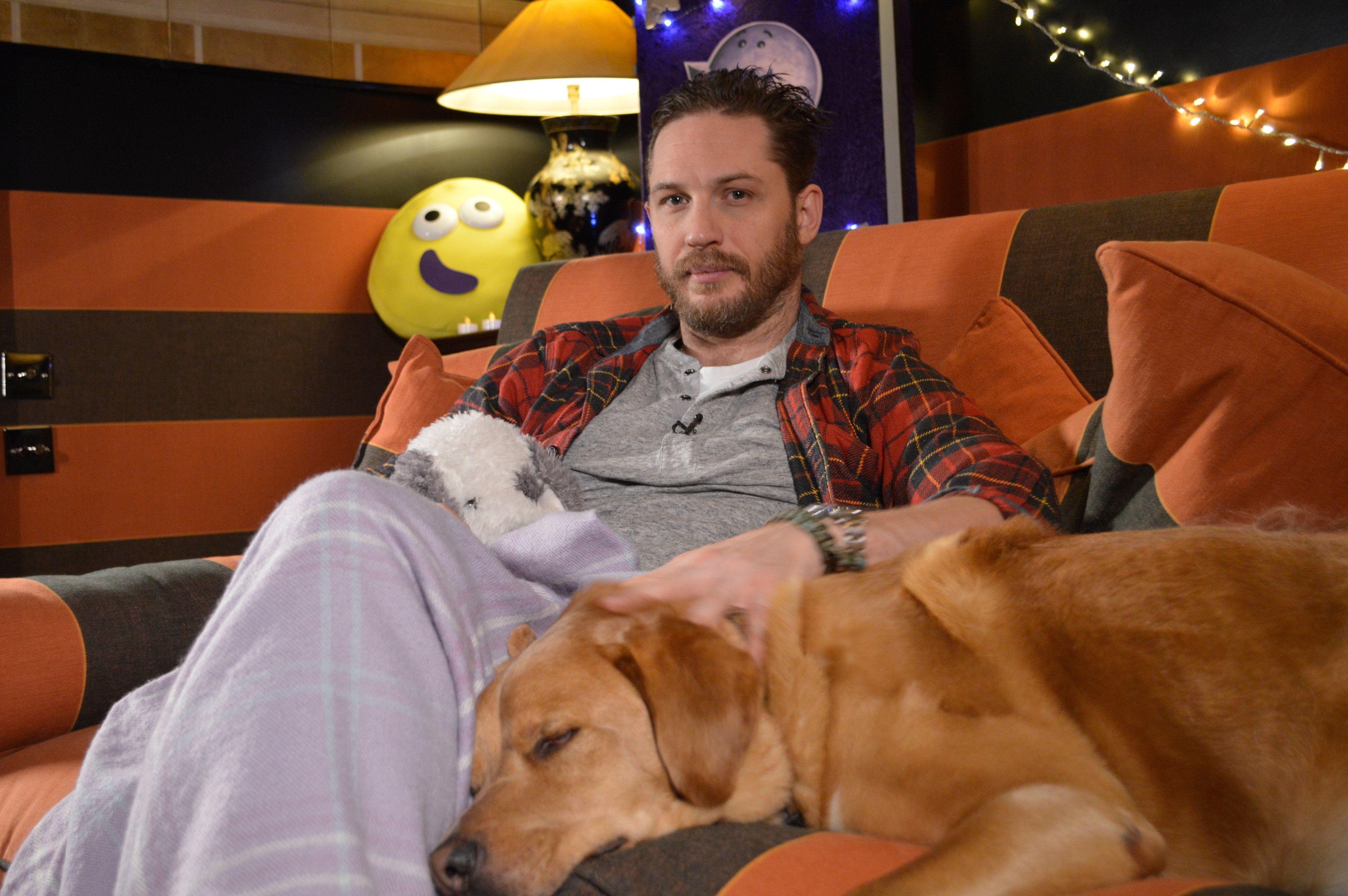 New Tom Hardy CBeebies Bedtime Story To Air, In Tribute To Star's Dog