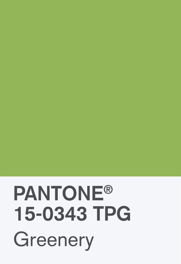 The Pantone Color Of The Year For 2017 Is Called