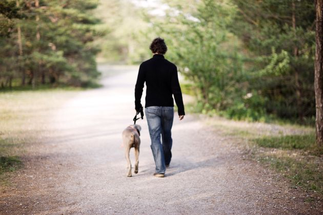 Pets are an important source of emotional support for many people with serious mental illness, a new...