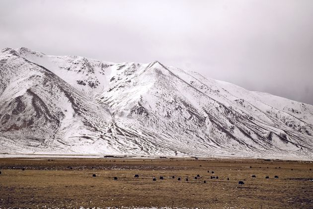Global warming is rapidly melting glaciers on the Tibetan plateau, a water source for many of the region's...