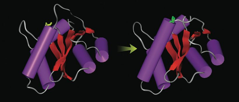 Molecular dynamics simulations, led by J. Andrew McCammon at UCSD, lead to the development of Isentress, an anti-AIDS drug ma