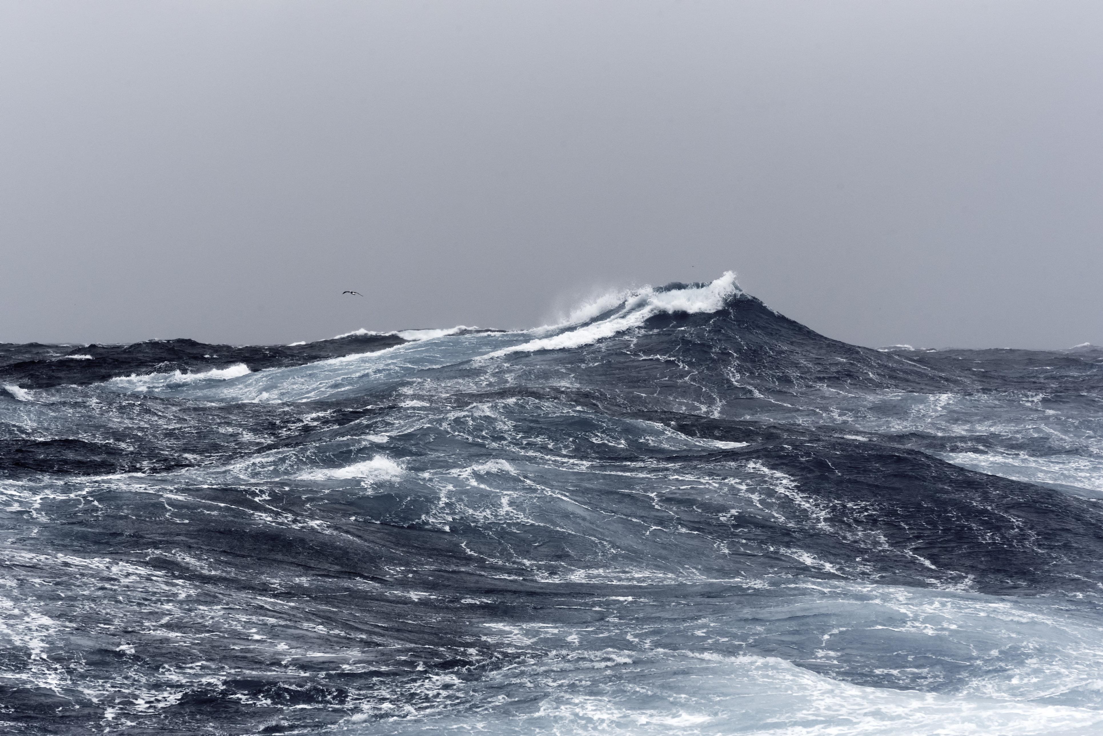 Big ocean swells in open water of the Southern Ocean