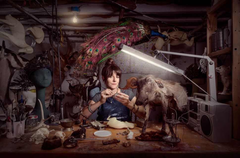 Beth Beverly; Taxidermist. Shot in Philadelphia, PA.