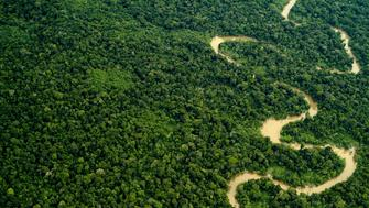 Aerial view of the Yavari Miri River and the Amazon Rainforest, Peru.