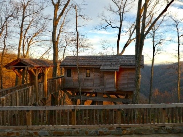 Primland's Barn Owl Tree House is situated in the strong limbs of an old and beautiful tree perched on a scenic ridge that of