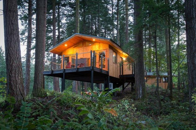 7 Luxury U S  Tree House Rentals That You Need to See | HuffPost