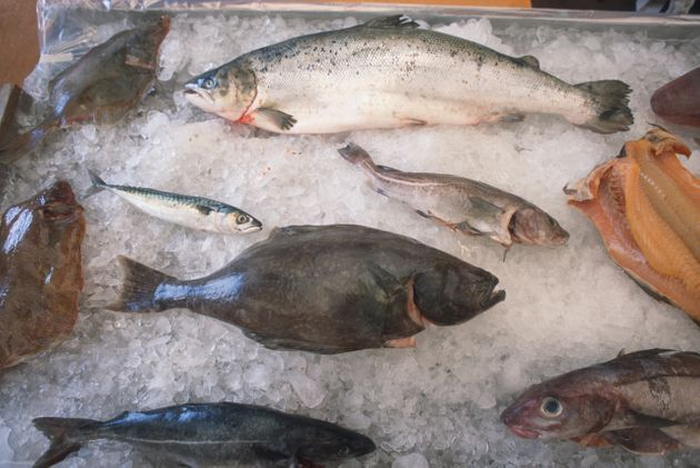 Freshly caught fish on ice. While the UK's fishing industry is relatively small - it's likely to be a...