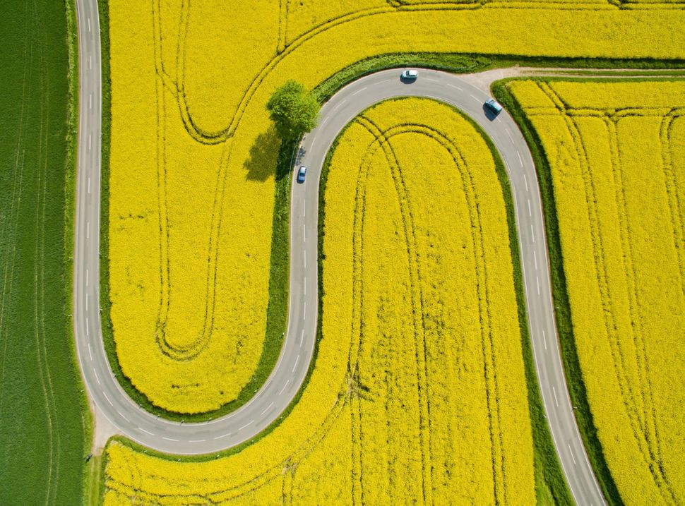 An aerial phototaken on May 12 shows cars driving on the winding L401 country road past rapeseed fields near Nienstedt,