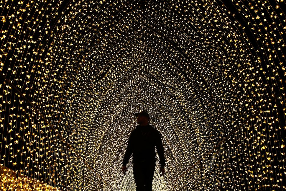 """A man walks inside the """"Cathedral of Light"""" at The Royal Botanic Gardens on May 25 in Sydney, Australia. Held annually, Vivid"""