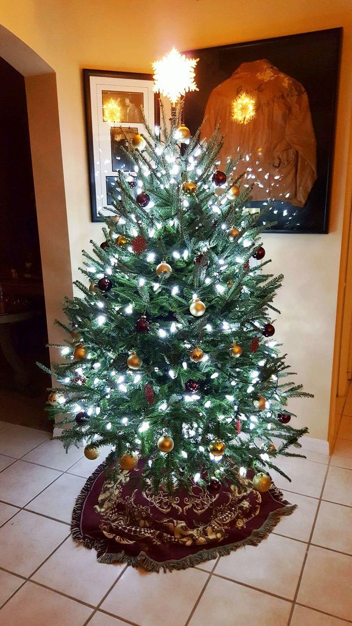 <p>Our kidless Christmas tree...</p>