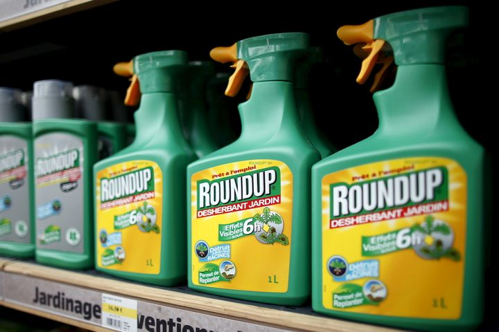 Glyphosate is the active ingredient in Monsanto's Roundup herbicide.