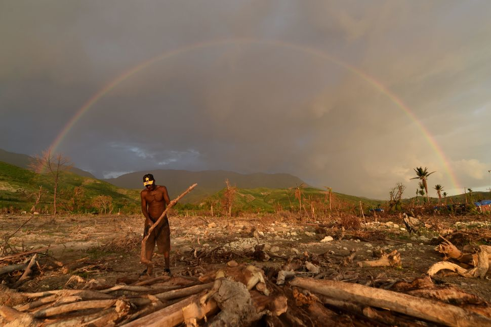 A man cuts wood to prepare charcoal with wood that was left over from damaged trees from Hurricane Matthew in the village of