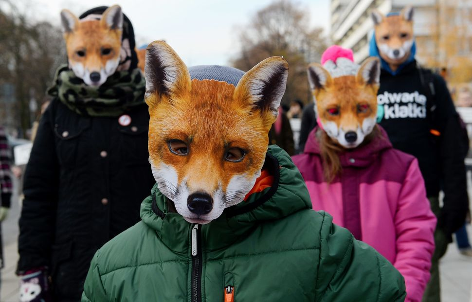 Activists dressed as foxes participate in the demonstration for the day without fur on Nov. 15 in front of Sejm in Warsaw, Po