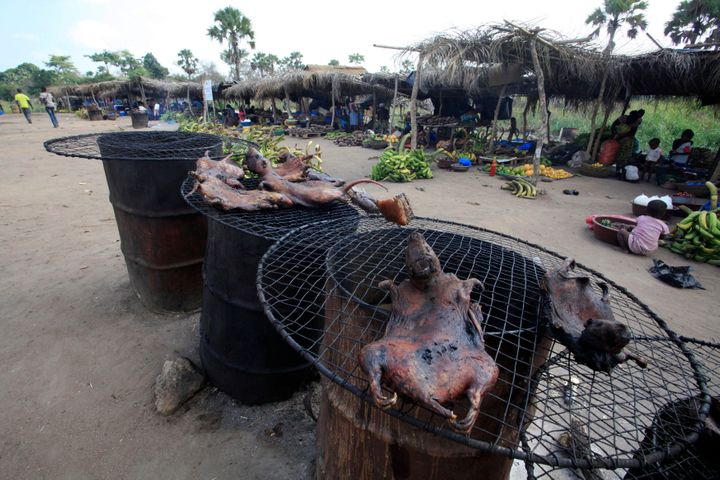 Dried bushmeat is displayed near a road of the Yamoussoukro highway March 29, 2014. Bushmeat - from bats to antelopes, squirrels, porcupines and monkeys - has long held pride of place on family menus in West and Central Africa, whether stewed, smoked or roasted. Experts who have studied the Ebola virus from its discovery in 1976 in Democratic Republic of Congo, then Zaire, say its suspected origin - what they call the reservoir host - is forest bats. Links have also been made to the carcasses of freshly slaughtered animals consumed as bushmeat.