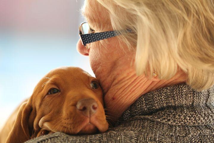 <p><em>animals can help combat the isolation that often accompanies depression</em></p>