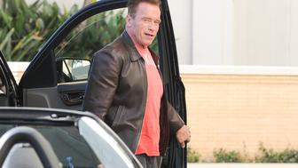 LOS ANGELES, CA - DECEMBER 20: Arnold Schwarzenegger is seen on December 20, 2016 in Los Angeles, California.  (Photo by BG002/Bauer-Griffin/GC Images)