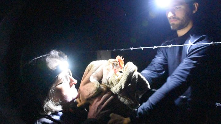 Open rescue activists Jason Andreas and Diane Gandee Sorbi rescue a hen from Pleasant Valley Farms, a cage-free Costco suppli