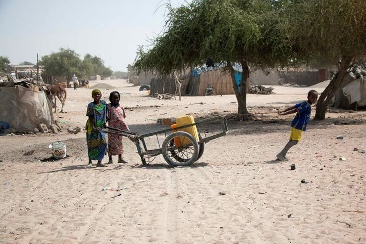 Displaced families in the Lake Chad area.