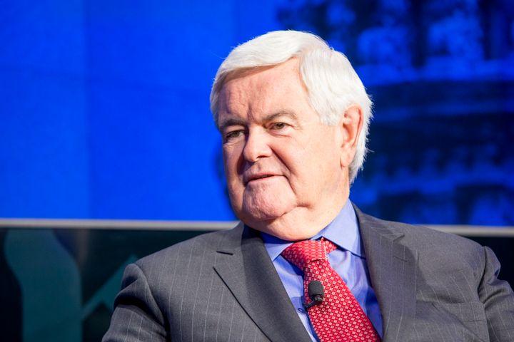 Former House Speaker Newt Gingrich, an informal adviser to Donald Trump, spoke approvingly of thepresident-elect's appa