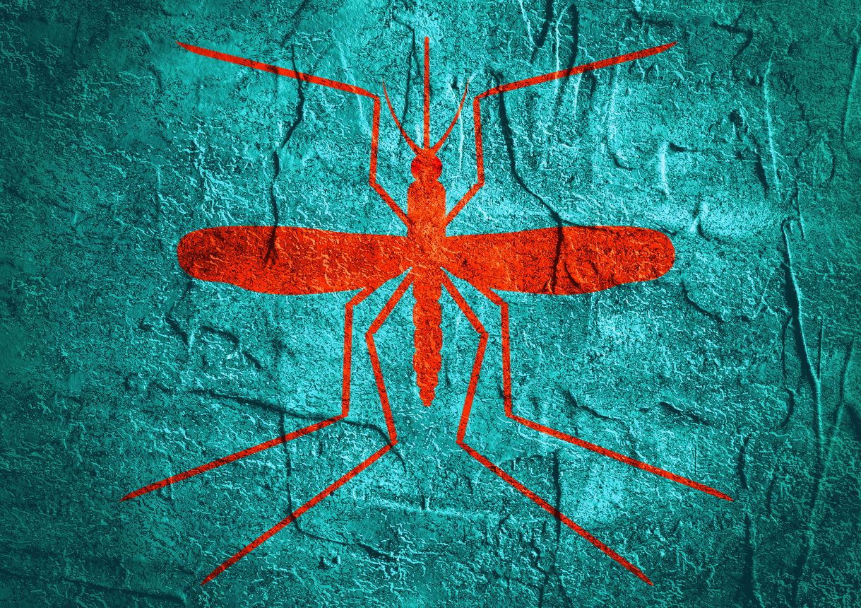 Cameron County, Texas, reported the state's first locally transmitted Zika case on Nov. 28.<span></span><span></span>