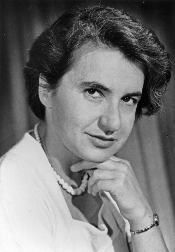 Without Rosalind Elsie Franklin, our knowledge of DNA today simply would not be the same. In 1956, the British chemist p