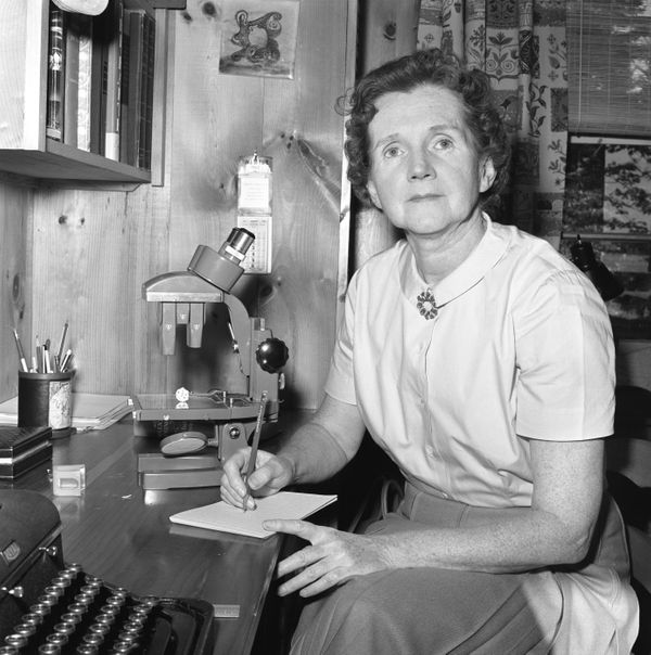 Rachel Carson's work as a marine biologist sparked an environmental movement that led to actual change&nbsp;<i>across the wor