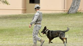 A military police officer and working dog are seen inside Lackland Air Force Base in San Antonio, Texas April 8, 2016. Two people were killed in an apparent murder-suicide at Lackland Air Force Base in San Antonio on Friday that triggered a 90-minute lockdown at the facility, military officials and the Bexar County Sheriff's Office said.   REUTERS/Darren Abate
