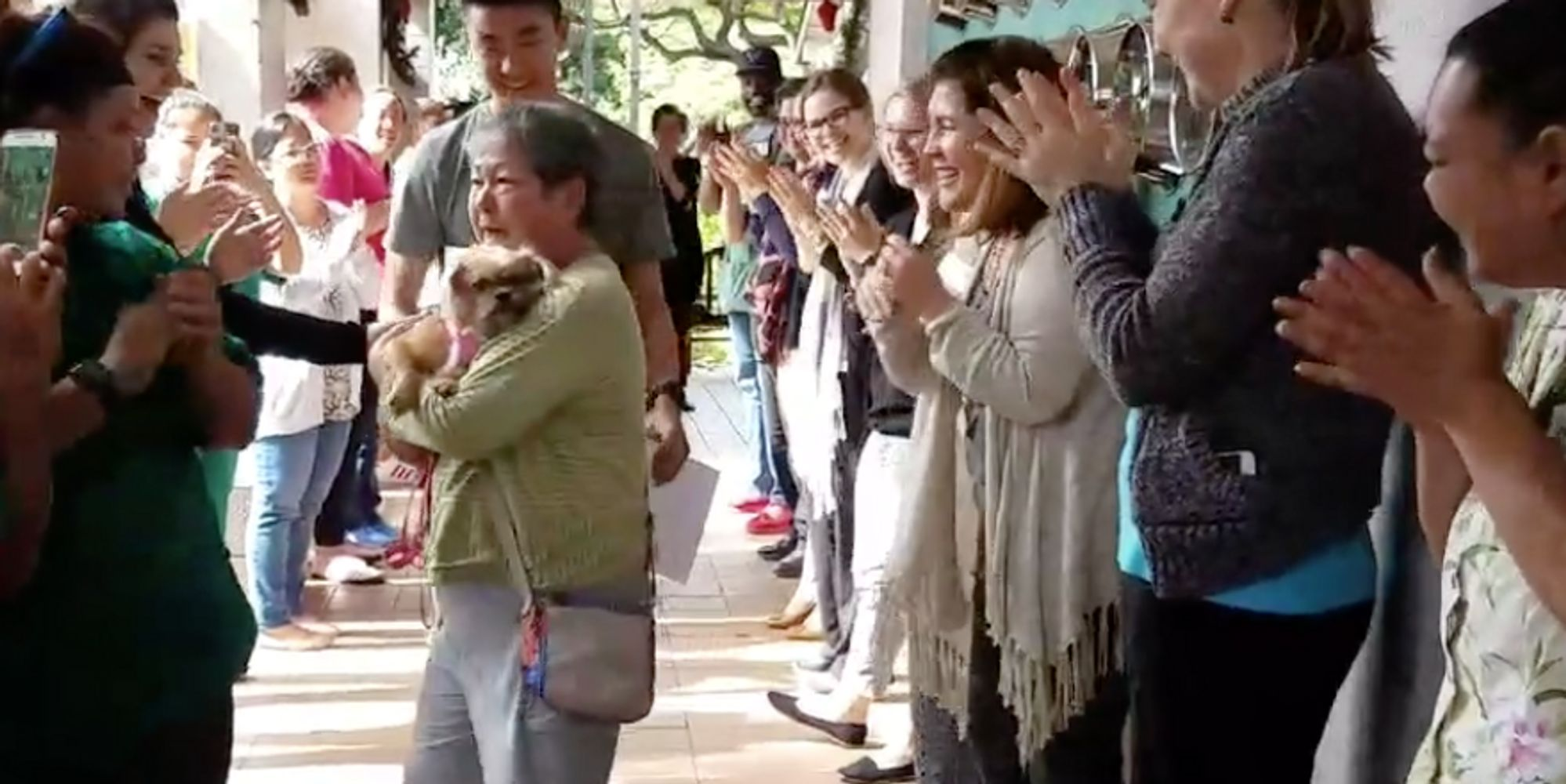 last dog at the shelter receives the sweetest farewell party the last dog at the shelter receives the sweetest farewell party the huffington post