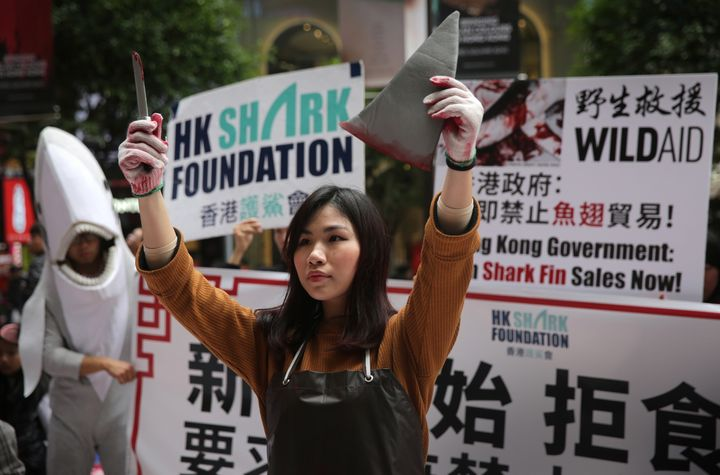 An activist in Hong Kong holds up a fake knife and shark fin during a protest to draw attention to the shark fin trade on Jan