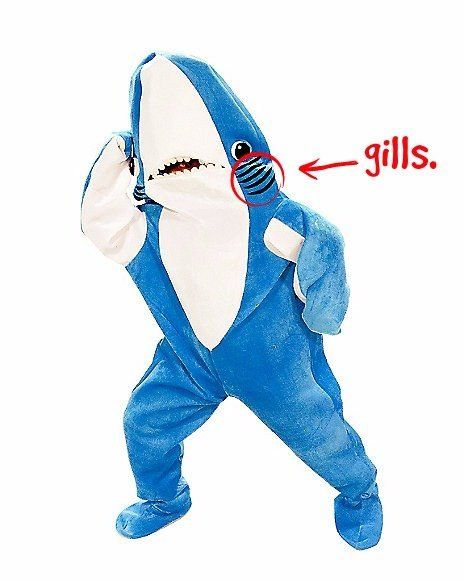 This is a shark costume.