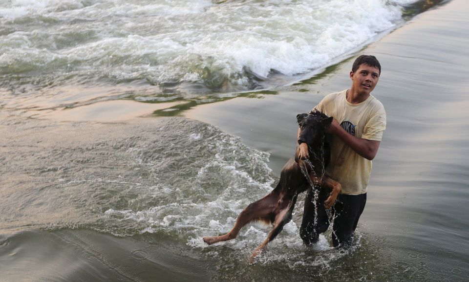 A boy plays with his dog along the beach at the river Nile, to escape from the hot weather, on the outskirts of Cairo, Egypt,