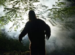 Authorities Find Sign Of Bigfoot In Maine