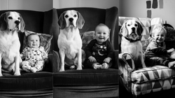 Baby And Beagle Pose For Adorable Monthly Photos Over Course Of 2