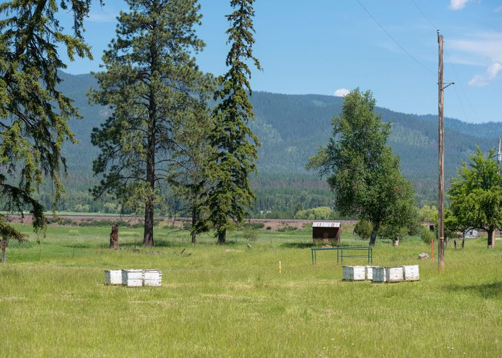 "A pasture in Whitefish, Montana. The <a href=""http://staging.hosted.ap.org/dynamic/stories/U/US_WHITE_SUPREMACISTS_MONTA"