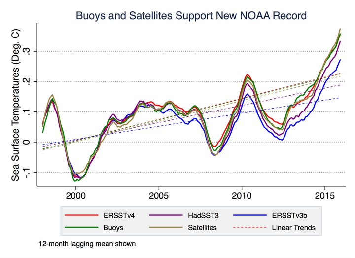Independent buoy and satellite sea surface temperature data (in green and gold, respectively) closely match NOAA's <a hr